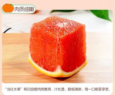 这是一张关于中华红橙 60 - 65mm 4两以下 的产品图片