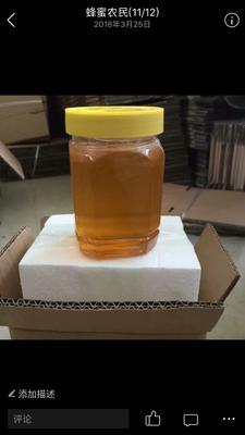 广东省茂名市茂南区土蜂蜜 塑料瓶装 2年 98%