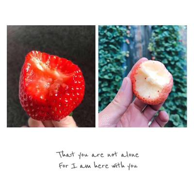 这是一张关于九九草莓 20克以上 的产品图片
