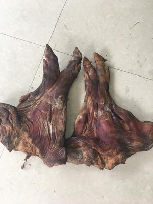 湖南省长沙市长沙县腊猪脚 散装
