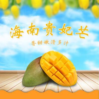 广西壮族自治区南宁市上林县贵妃芒 2两以上 7斤皮薄核小香甜多汁