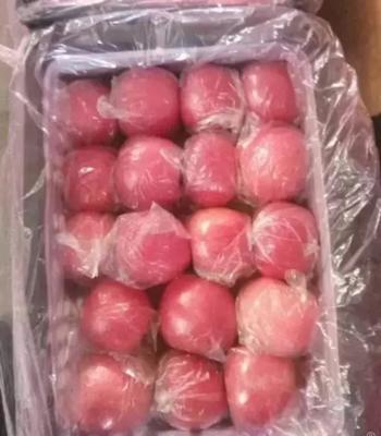 山西省运城市临猗县红富士苹果 85mm以上 条红 纸+膜袋