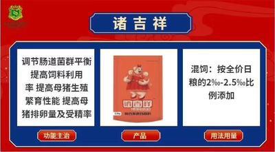 河南省郑州市金水区怀孕母猪饲料