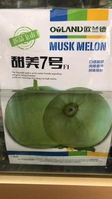 这是一张关于新甜脆绿宝甜瓜种子 杂交种 ≥97% 的产品图片