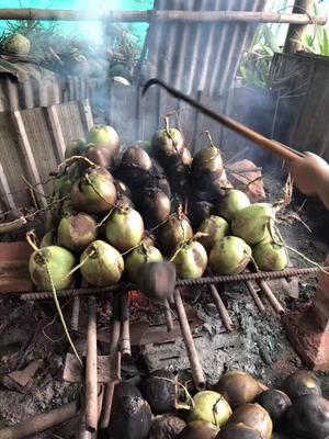 广东省广州市增城区泰国香水椰 1 - 1.5斤