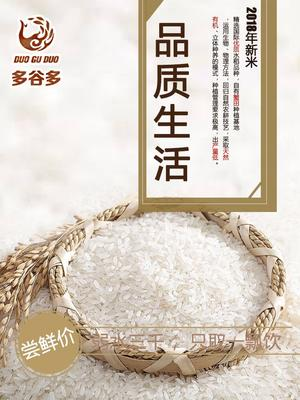 辽宁省沈阳市新民市东北大米 一等品 粳米 一季稻