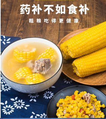 黑龙江省哈尔滨市五常市速冻糯玉米