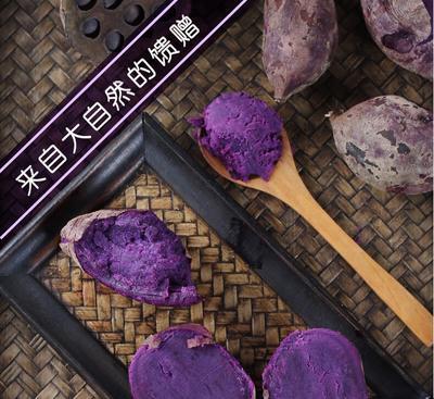 山东省临沂市临沭县板栗紫薯 3两~6两