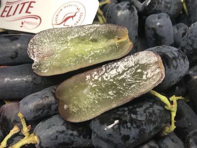 广东省深圳市宝安区澳洲有籽黑提 1.5- 2斤 1次果 5%以下
