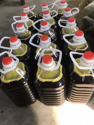 浙江省衢州市衢江区自榨纯菜籽油