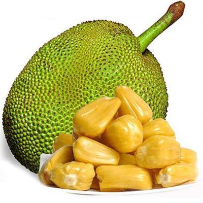 云南省德宏傣族景颇族自治州瑞丽市泰国菠萝蜜 10-15斤
