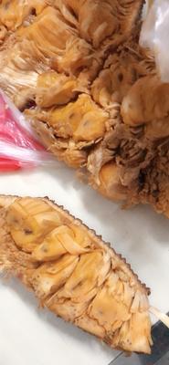 广东省茂名市电白区泰国菠萝蜜 10-15斤