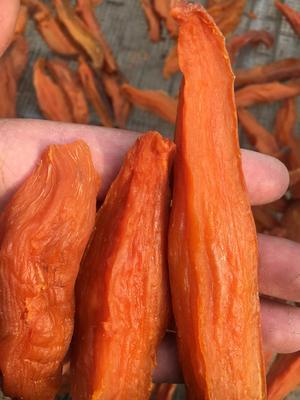河北省沧州市任丘市倒蒸红薯干 半年 条状 散装