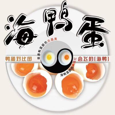 广西壮族自治区北海市合浦县海鸭蛋 礼盒装 食用