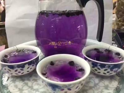 青海省海西蒙古族藏族自治州格尔木市黑枸杞 特优级