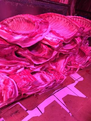 江苏省无锡市梁溪区猪肉类 条肉