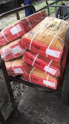 重庆九龙坡区牛肉类 生肉