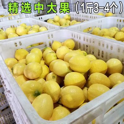 四川省资阳市安岳县安岳柠檬 1.6 - 2两