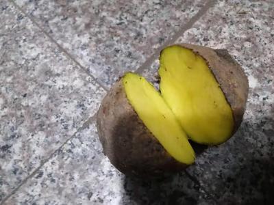 黑龙江省齐齐哈尔市讷河市延薯4号土豆 3两以上