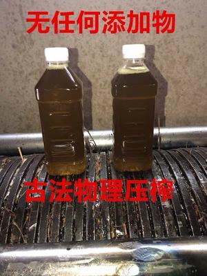 福建省三明市明溪县压榨一级山茶油