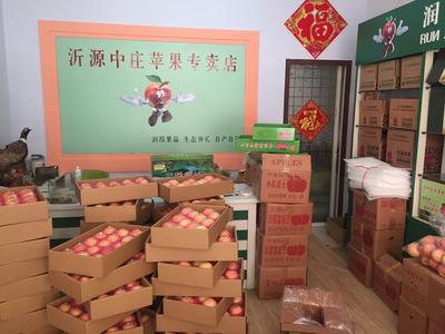山东省淄博市沂源县红富士苹果 75mm以上 条红 纸袋