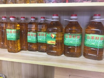 福建省龙岩市长汀县现榨山茶油