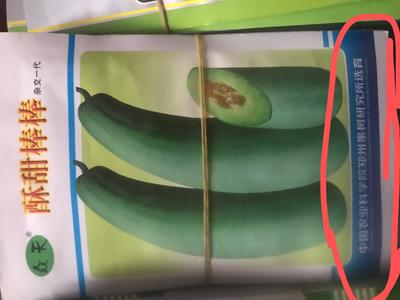 河南省驻马店市泌阳县羊角蜜甜瓜种子 杂交种 ≥90%