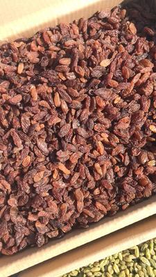 新疆维吾尔自治区吐鲁番地区吐鲁番市红香妃葡萄干 优等