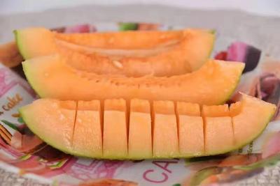 广西壮族自治区南宁市西乡塘区海南香妃蜜哈密瓜 2斤以上 招代理一件代发包售后
