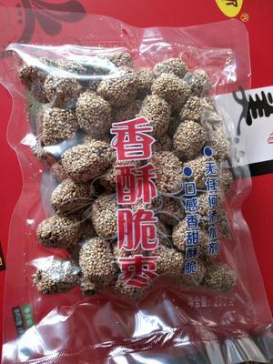 河北省沧州市献县香脆枣 特级 20袋