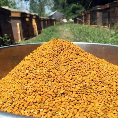 安徽省滁州市凤阳县荷花粉 24个月以上 荷花粉莲花粉250克