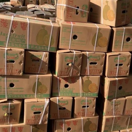 海南菠萝蜜 29-32斤 三亚发货 只发一级果 8分熟发货 包邮到家