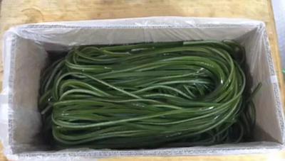 这是一张关于海带丝 海带头的产品图片