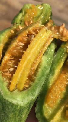 山东省临沂市蒙阴县博洋61甜瓜 0.3斤以上