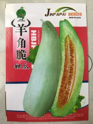 江苏省宿迁市沭阳县羊角蜜甜瓜种子 常规种(大田用种) ≥85%