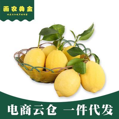重庆潼南县尤力克柠檬 2 - 2.6两 净重9斤/箱一件代发