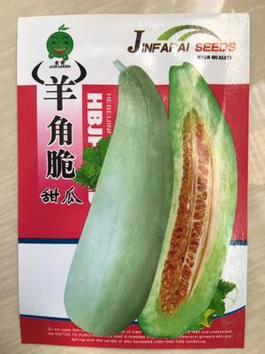 江苏省宿迁市沭阳县羊角脆甜瓜种子 常规种(原种) ≥85%