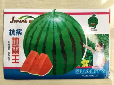 江苏省宿迁市沭阳县地雷西瓜种子 二倍体杂交种 ≥85%