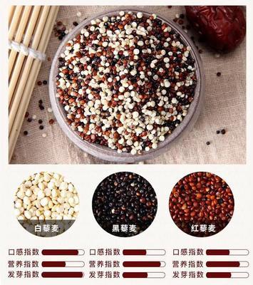 这是一张关于红藜麦 的产品图片