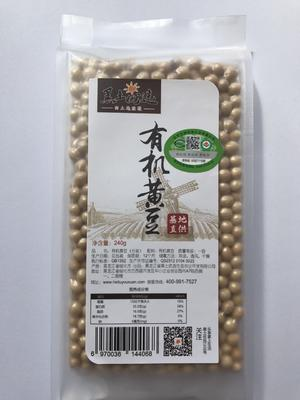 黑龙江省绥化市兰西县有机黄豆 1等品 生大豆