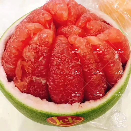 红宝石葡萄柚苗 ,泰国红宝石柚子苗