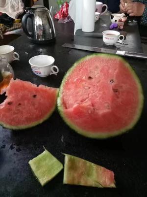 山东省潍坊市寒亭区早春红玉西瓜 3斤打底 9成熟 2茬以上 有籽