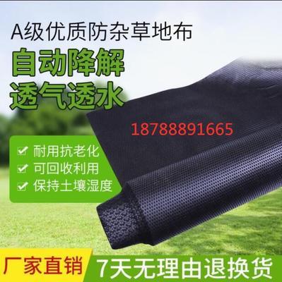 防草布 生态降解、黑布、地膜、保湿布