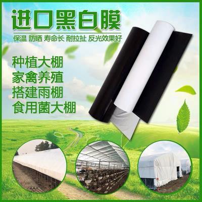 黑白膜 进口抗老化鸡舍养殖大棚膜反光加厚大棚塑料布食用菌隔热膜