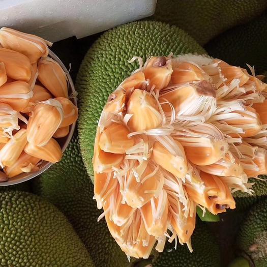 红肉菠萝蜜 质量保证,长期供货,供小档口果店,包邮