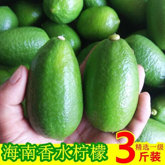 香水柠檬 海南香水柠檬 无籽柠檬 8斤装 特价全场包邮