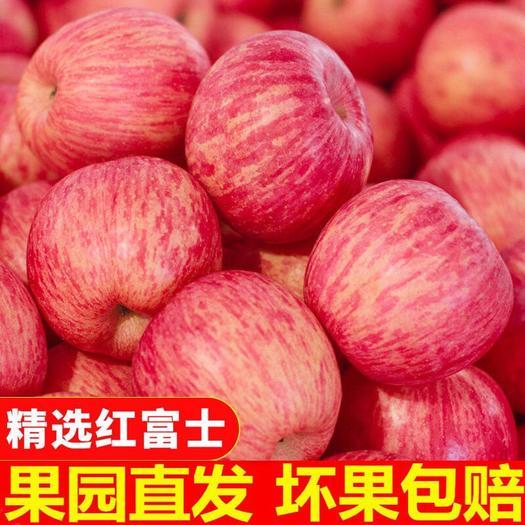 【正宗红富士】陕西苹果脆甜新鲜冰糖心水果10斤装 特价包邮