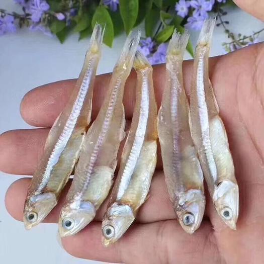 深海天然小鱼干 小银鱼 小鱼干
