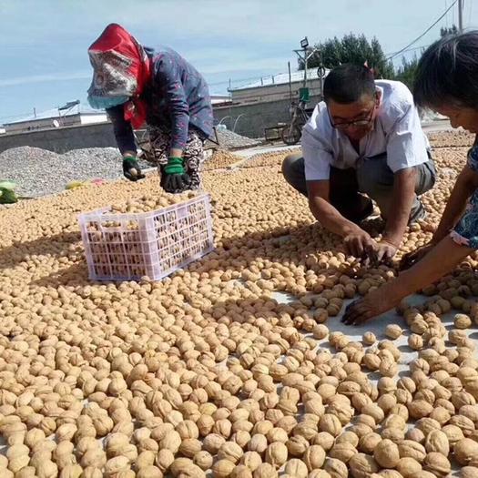 新疆阿克苏185纸皮薄皮核桃 今年新核桃、有量有价