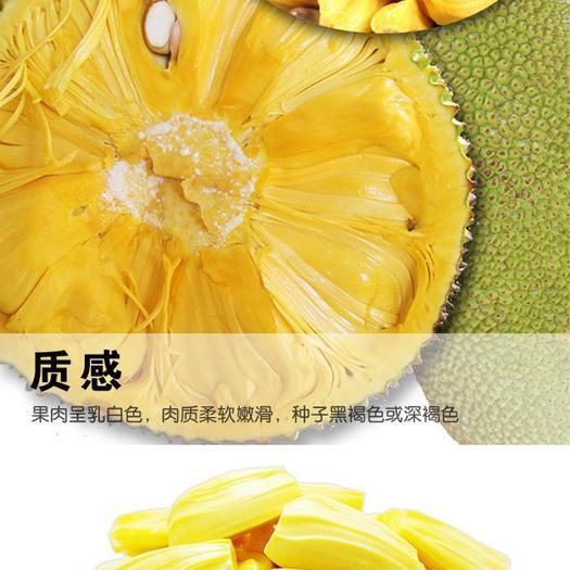 海南菠萝蜜现砍现发、特香爆甜24-40